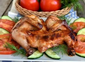 Цыплята «Аврора» - фото шаг 4