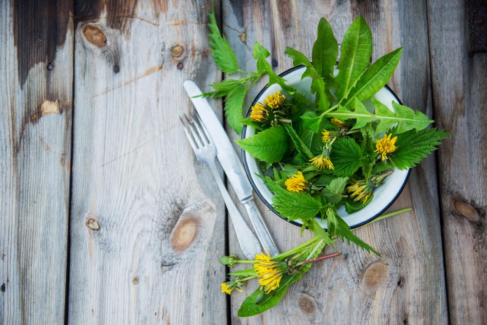 Свежая зелень для коктейля: цветы и листья одуванчиков, крапива