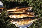 Копченая рыба на природе