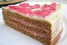 Торт на день рождения девочке 12 лет