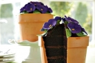Торт Цветок в горшке