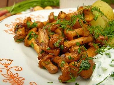 грибы вешенки жареные рецепт с фото пошагово #17