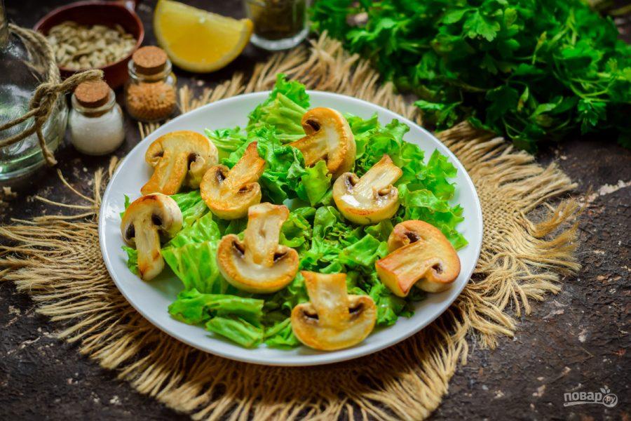 Зеленый салат с грибами