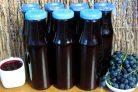 Виноградный сок: как сделать в домашних условиях на зиму, как приготовить