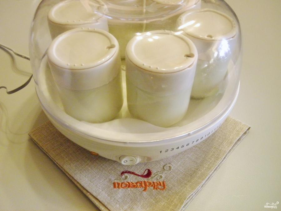 Йогурт с фруктами в йогуртнице