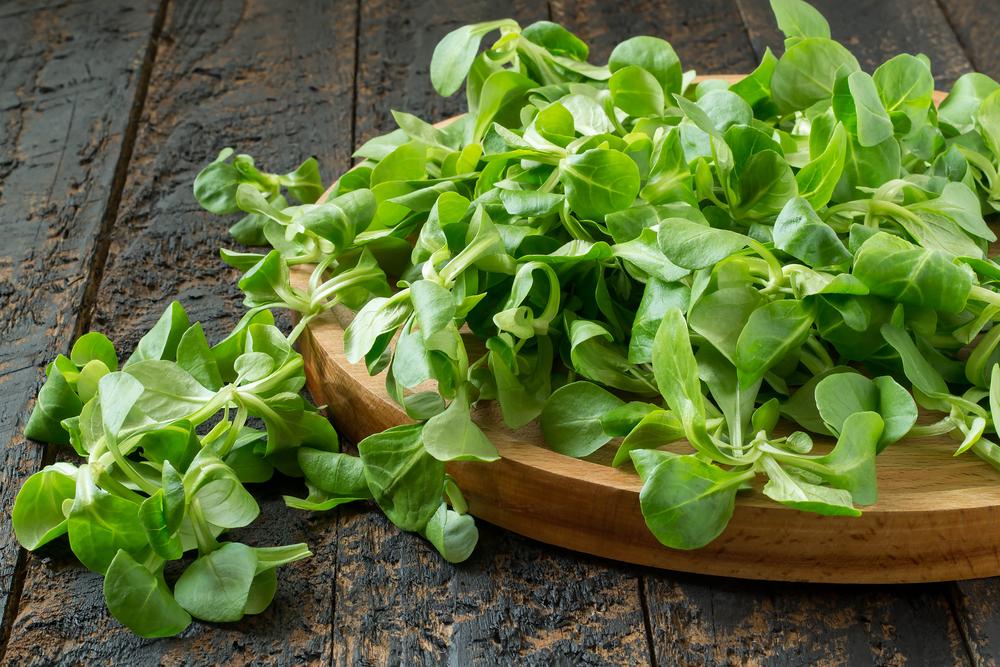 Корн или полевой салат