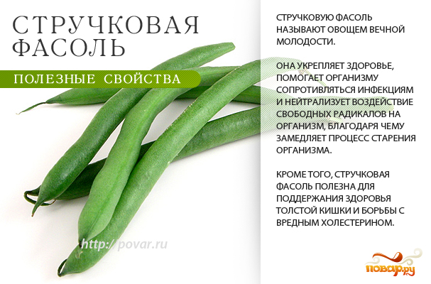 Стручковая фасоль - полезные свойства