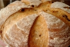 Сдоба в хлебопечке