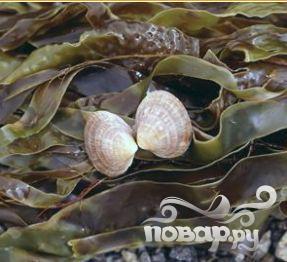 Квас из морской капусты