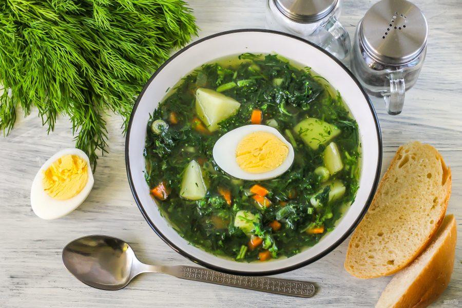 суп из крапивы рецепт с фото пошагово копилке додо