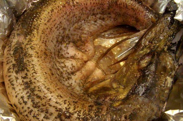 Щука в сметане в духовке