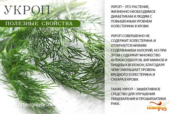 Укроп - полезные свойства