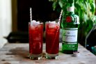 Гранатовый джин-тоник
